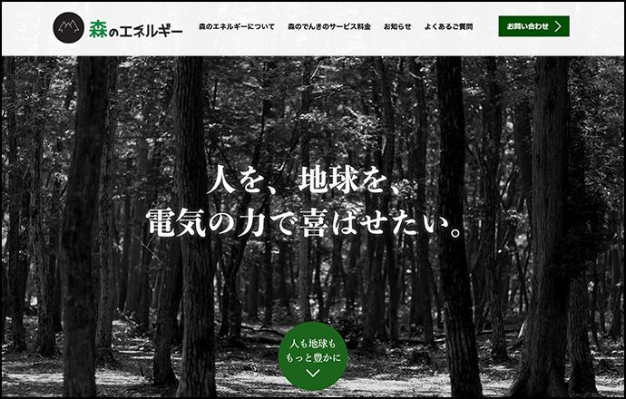 Fujimi Forest Energy, Inc.
